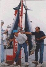 NJ Shark fishing